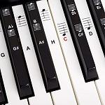 Keyboard Notenaufkleber